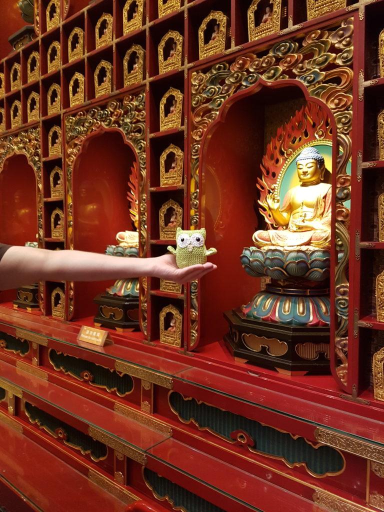 Wobby vor einem buddhistischen Schrein